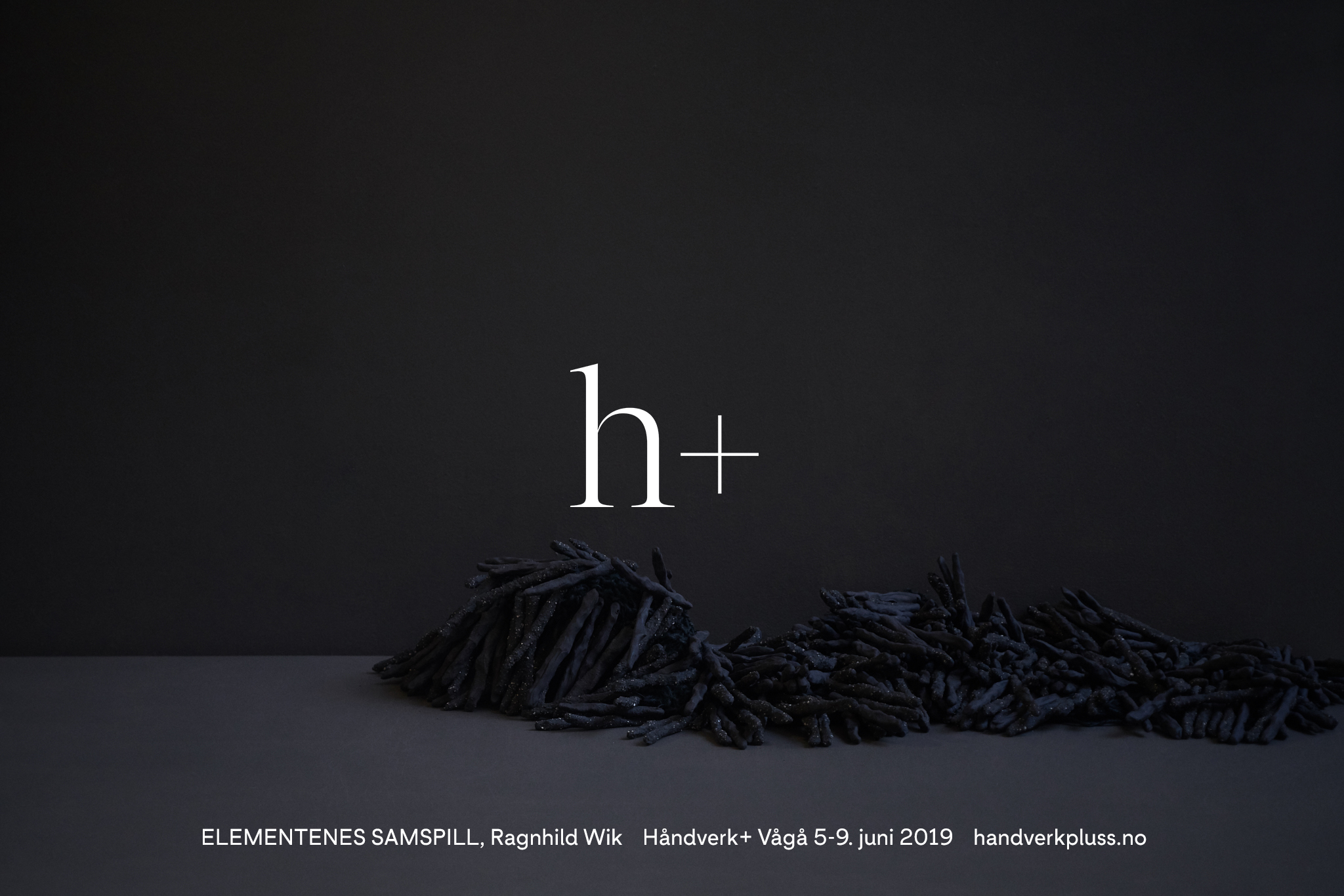 hpluss_03.jpg