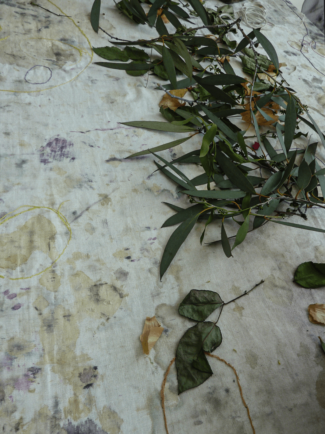 plantefargeworksop5_lisebjornelinnert_DTE.jpg