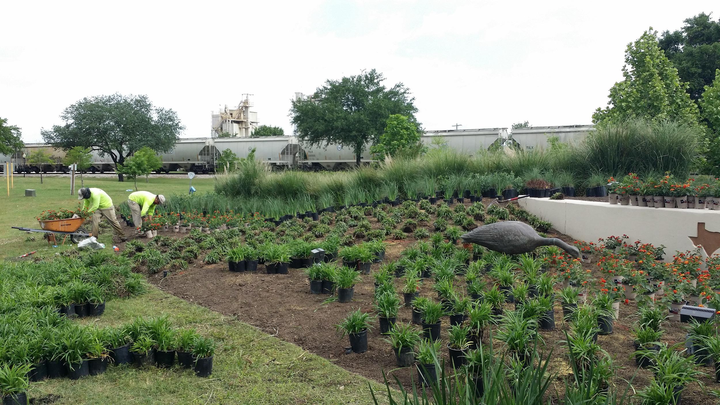 Earthfirst Landscape & Irrigation-4.jpg
