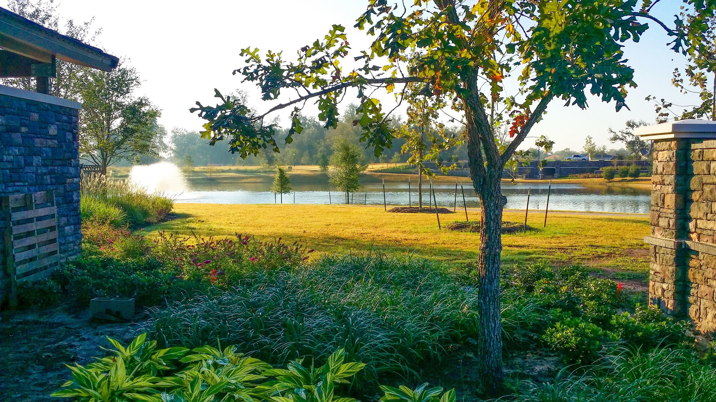 Earthfirst Landscape & Irrigation-6.jpg