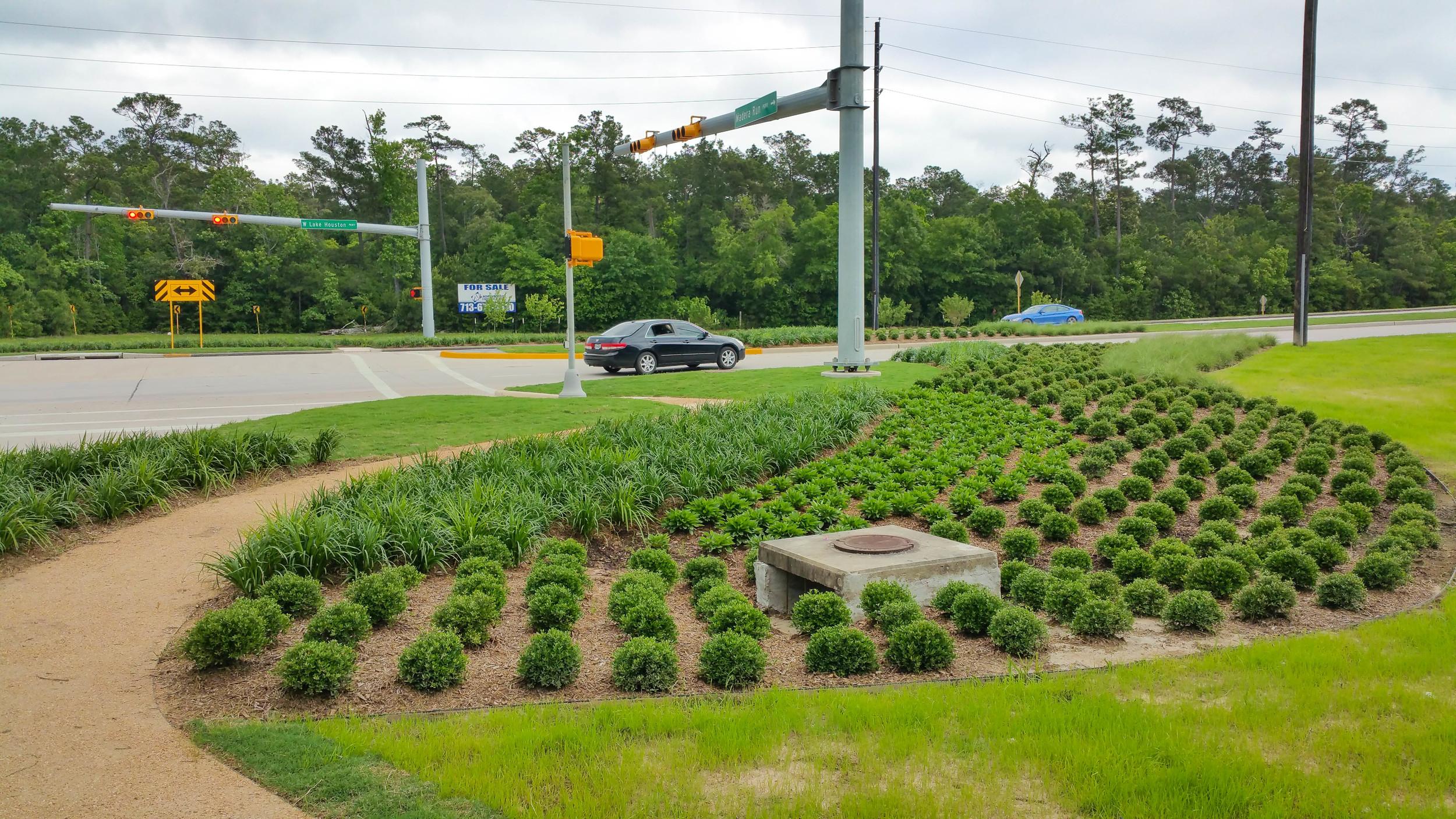 Earthfirst Landscape & Irrigation-25.jpg