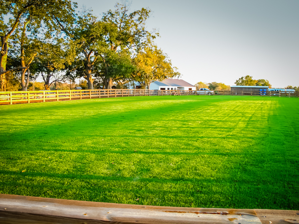 Athletic Field Services-12.jpg