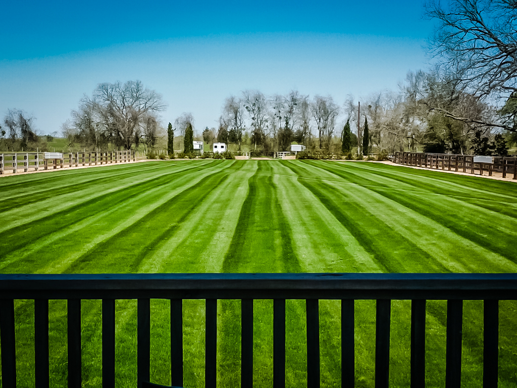 Athletic Field Services-16.jpg