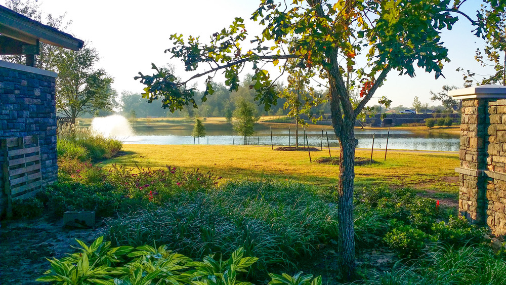 Earth First Landscapes provides dependable grounds maintenance in Katy, Texas!