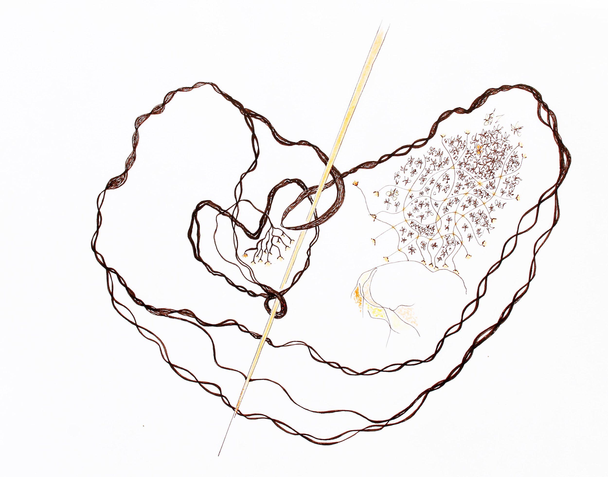 Umbilicus mundi