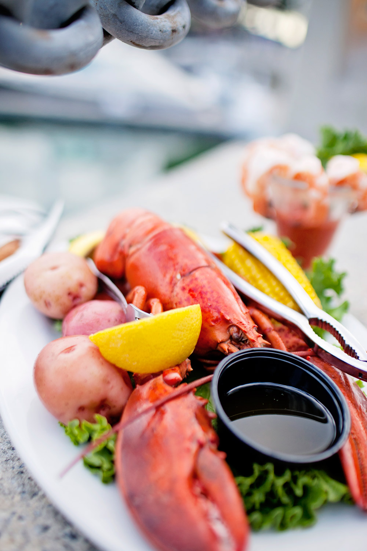 Hilton Head Live Maine Lobster
