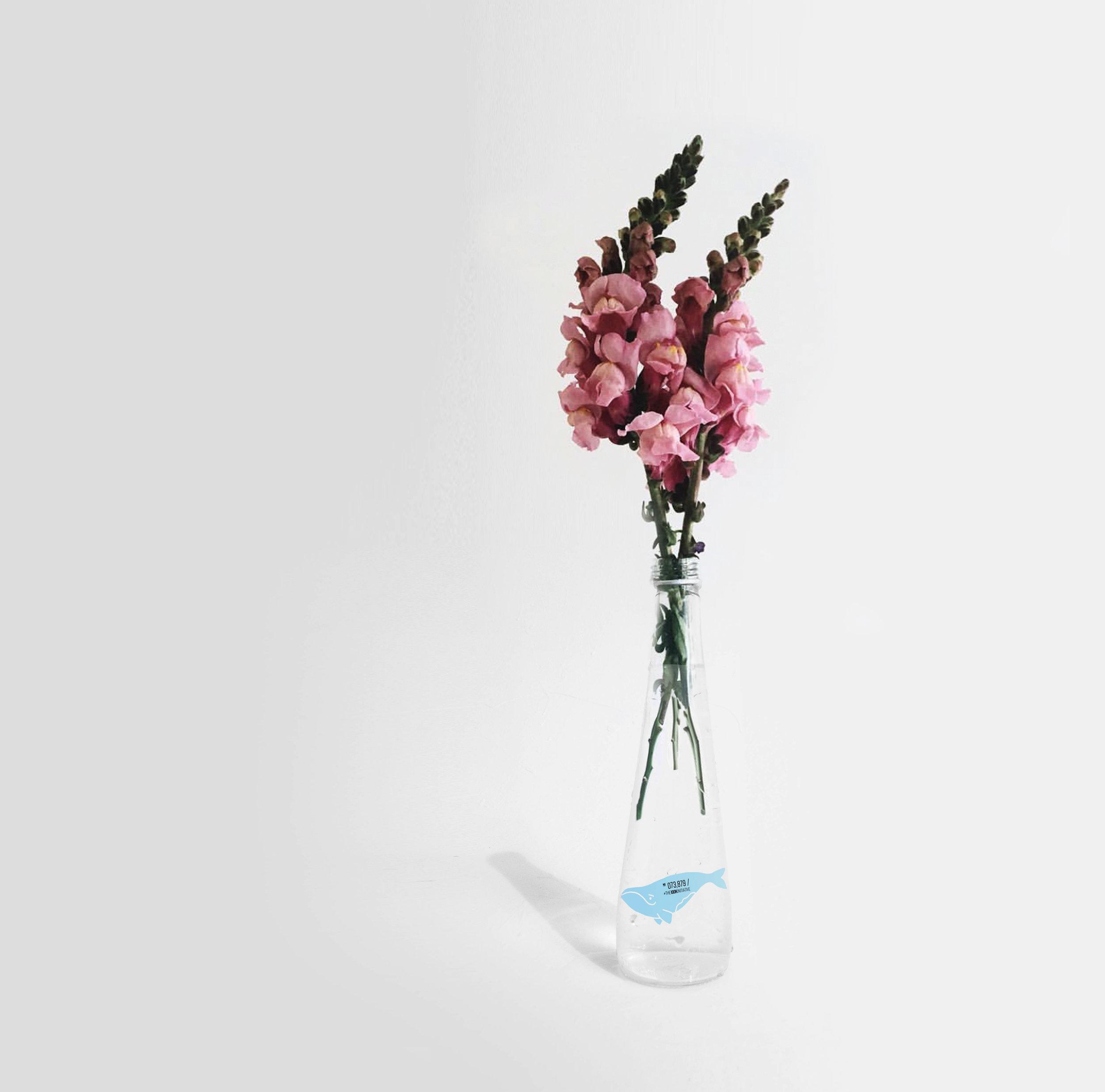 Reincarnateyour bottle. -