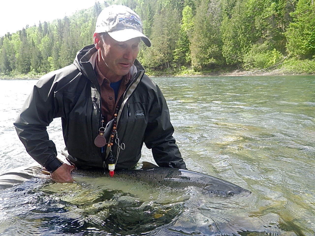 ASF president Bill Taylor releases a nice fish back for a swim on the Bonaventure, nice one Bill!