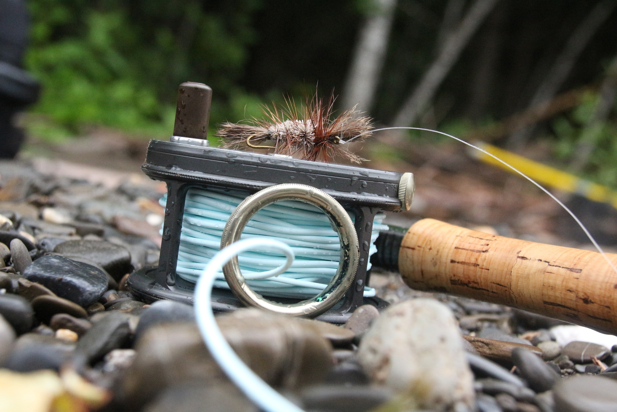 Dry Fly time!