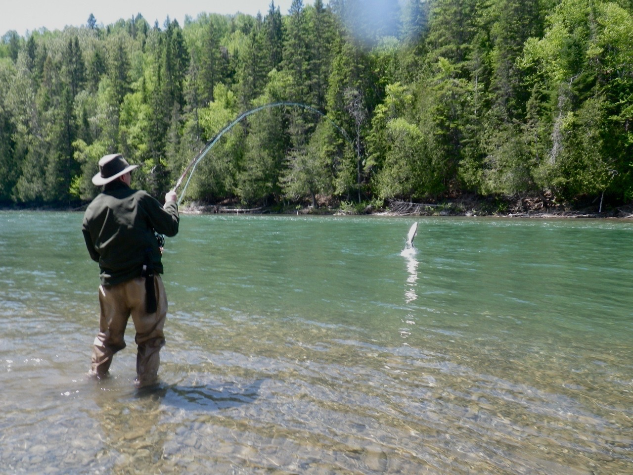 Salmon Lodge regular Brian Spence plays a nice fish on the Bonaventure.