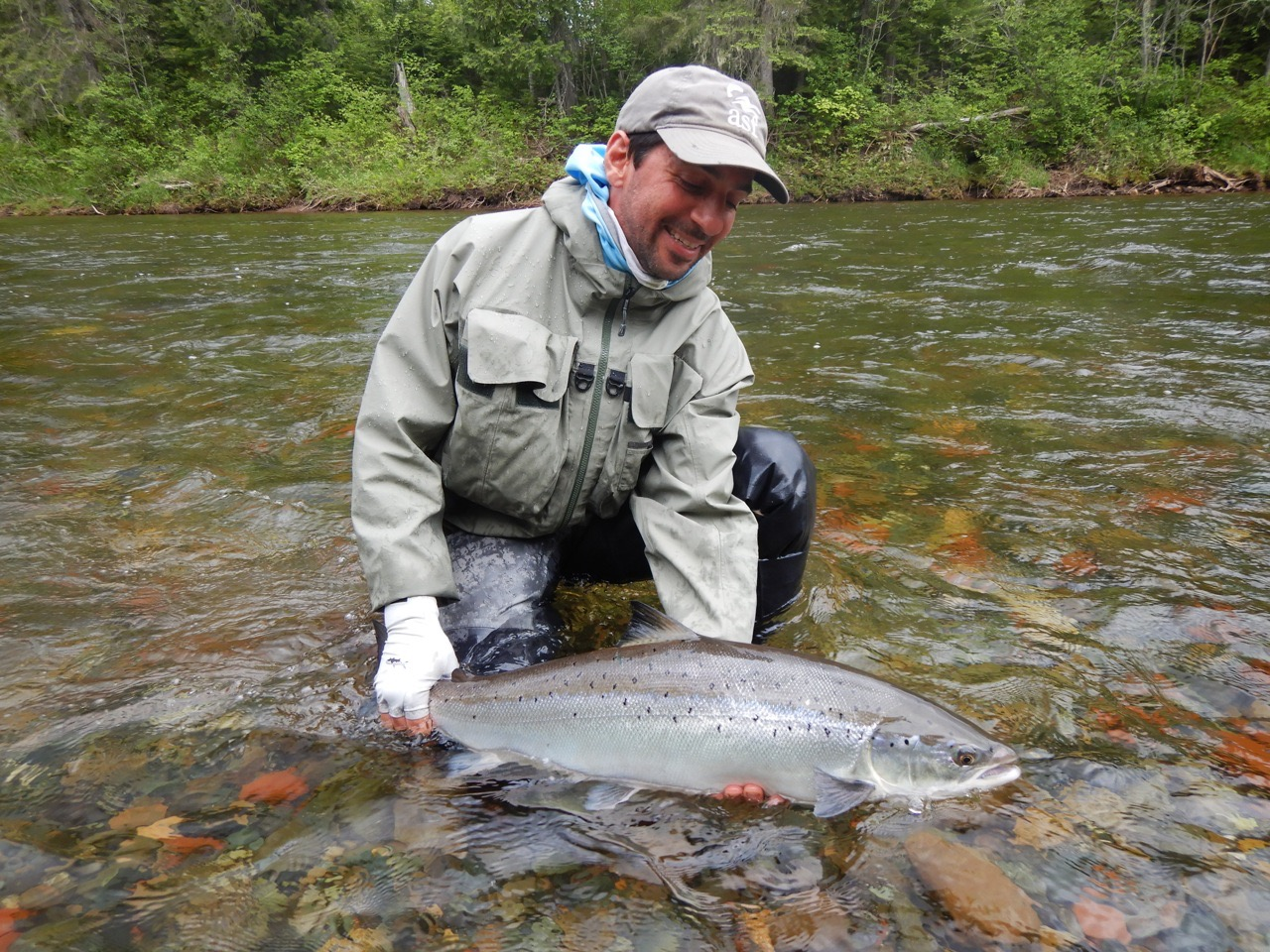 Our long time friend and salmon Lodge guest Anthony Mellano with his first one of the new season, Congratulations Anthony!