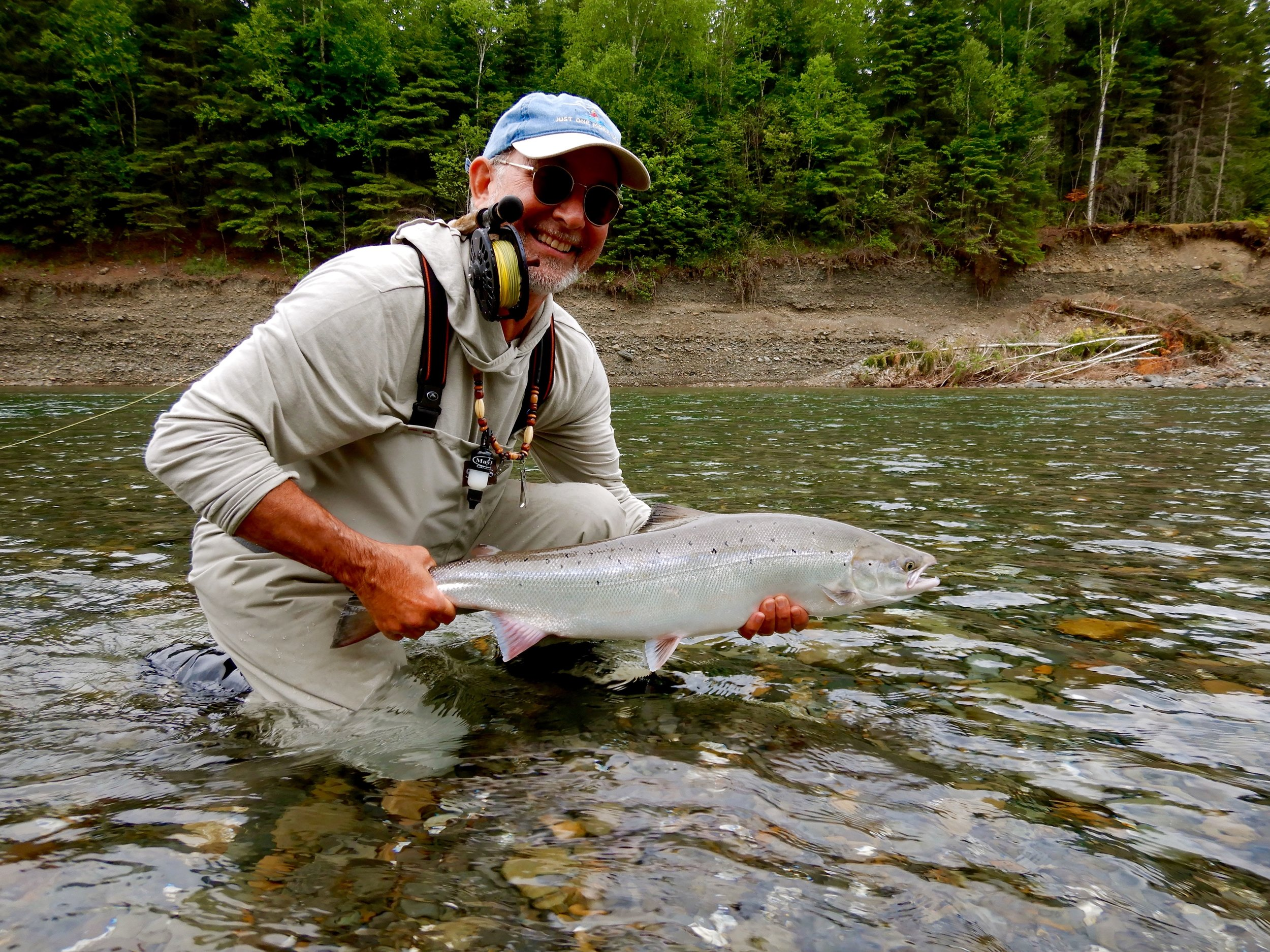 Michael Peluso landed this nice salmon on the Bonaventure , nice one Michael, congratulations,