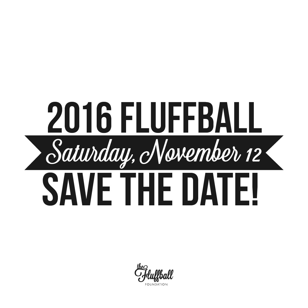 The Fluffball Foundation