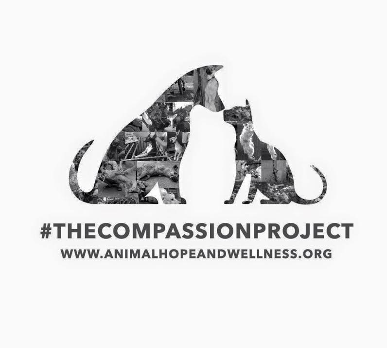The Compassion Project.jpg