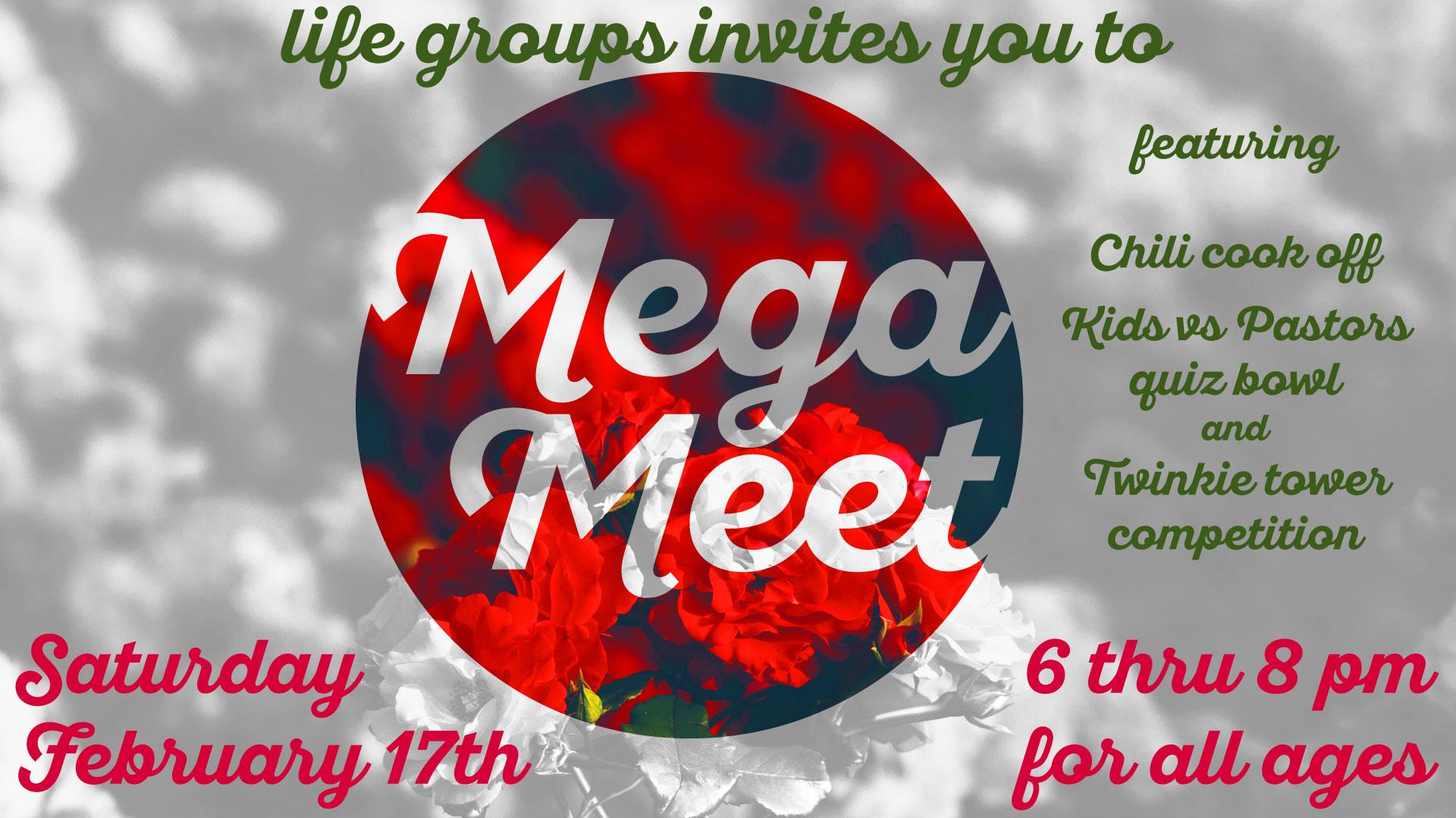 Mega-Meet-(Valentine).jpg