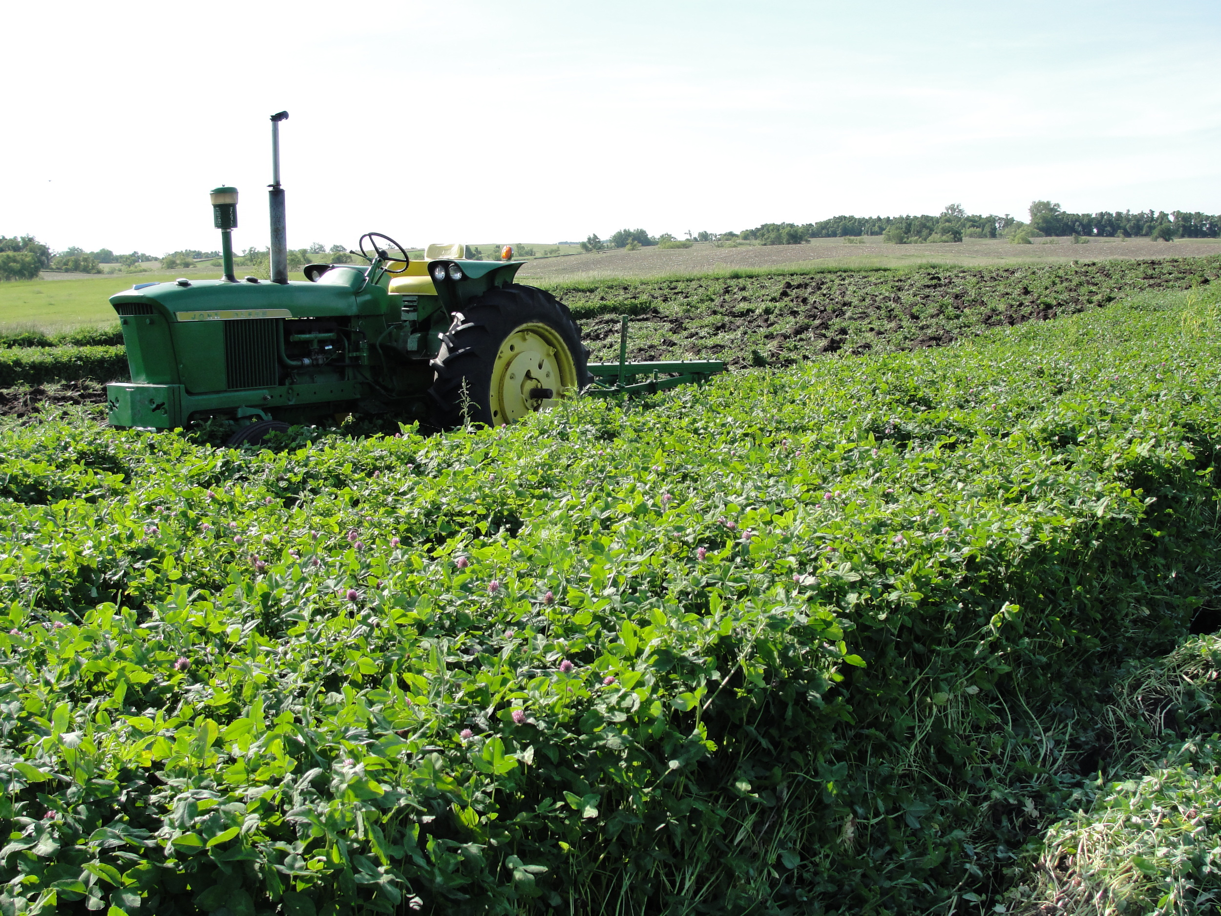 Plowing in the clover
