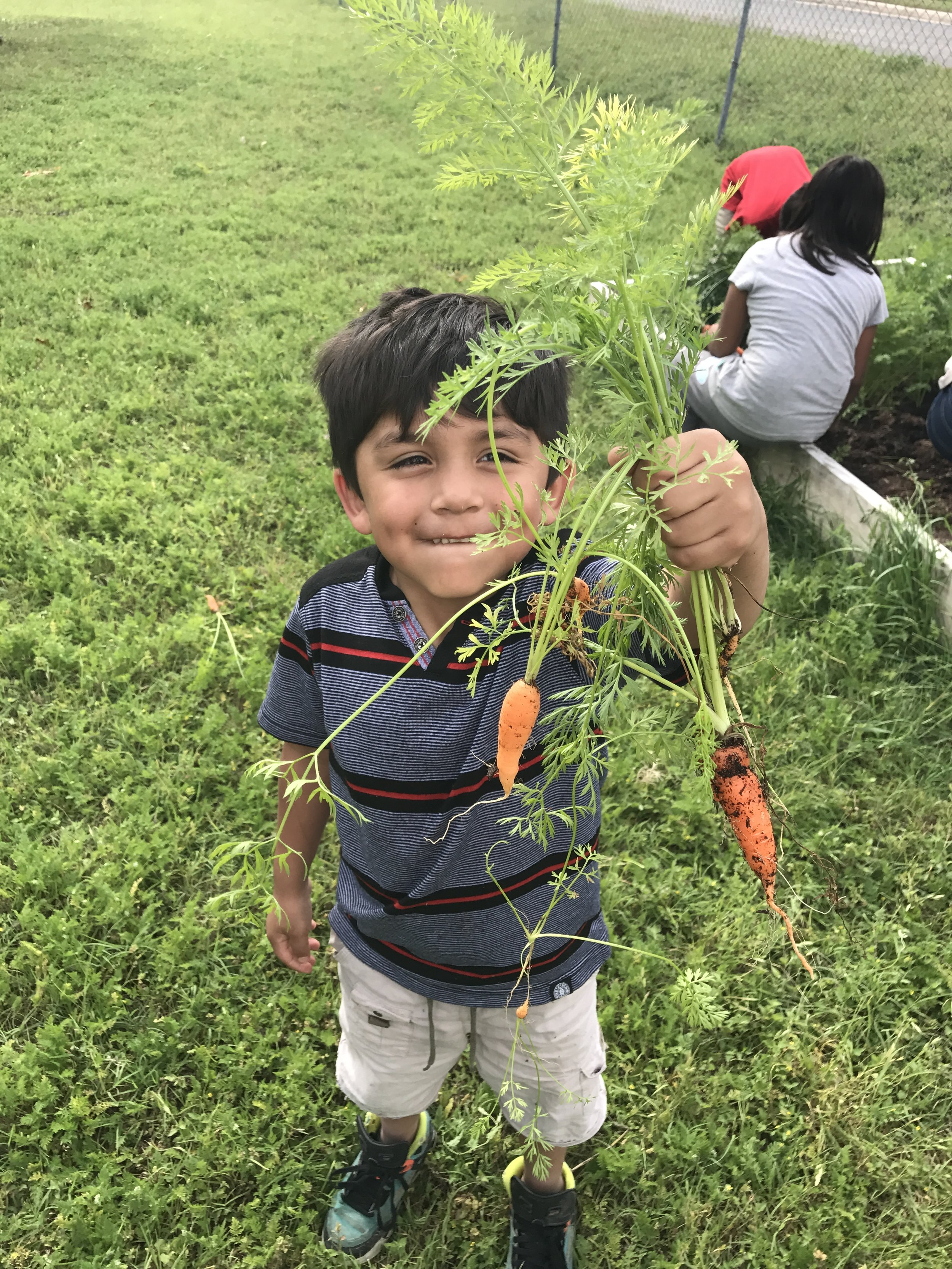 Boy with Carrots_GAVA EC_April 2017.jpg