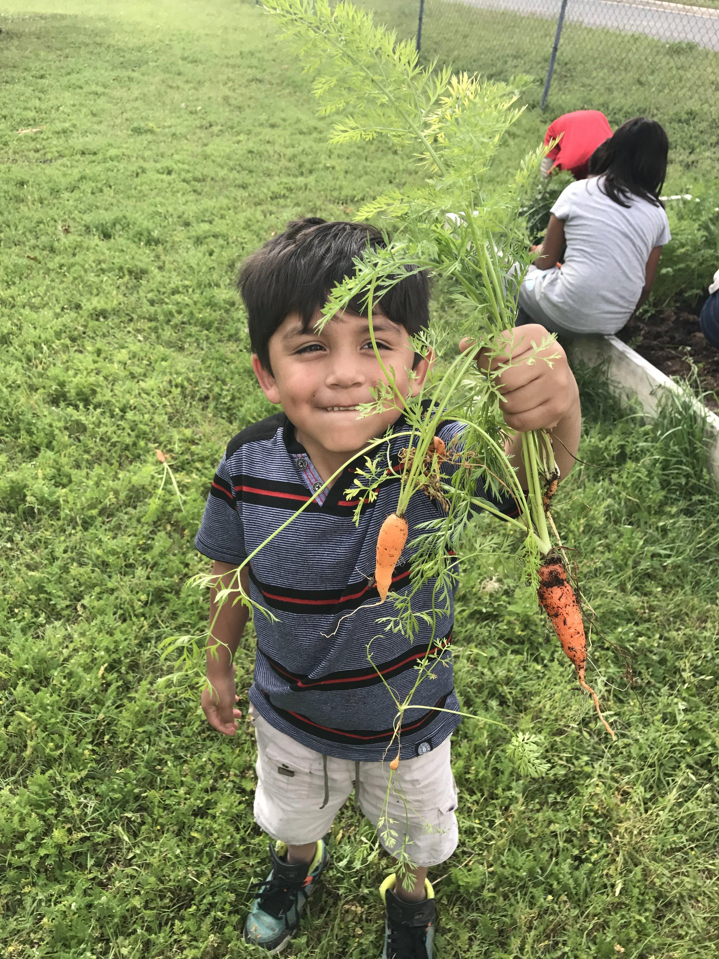 Boy with Carrots_GAVA EC_April 2017.jpg