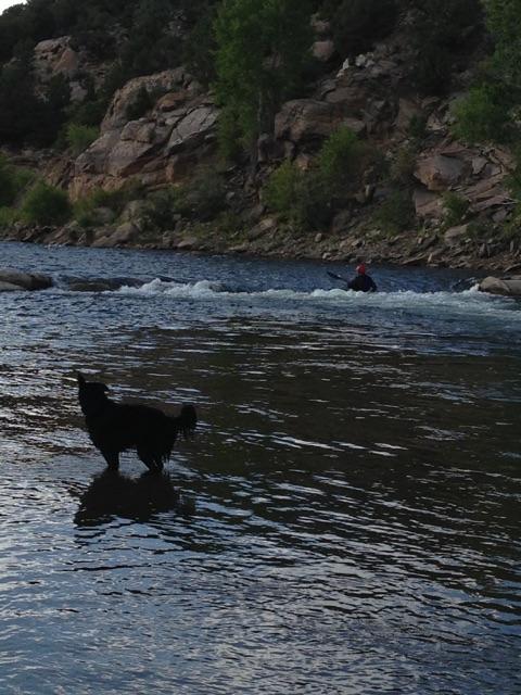 Buena Vista River Park