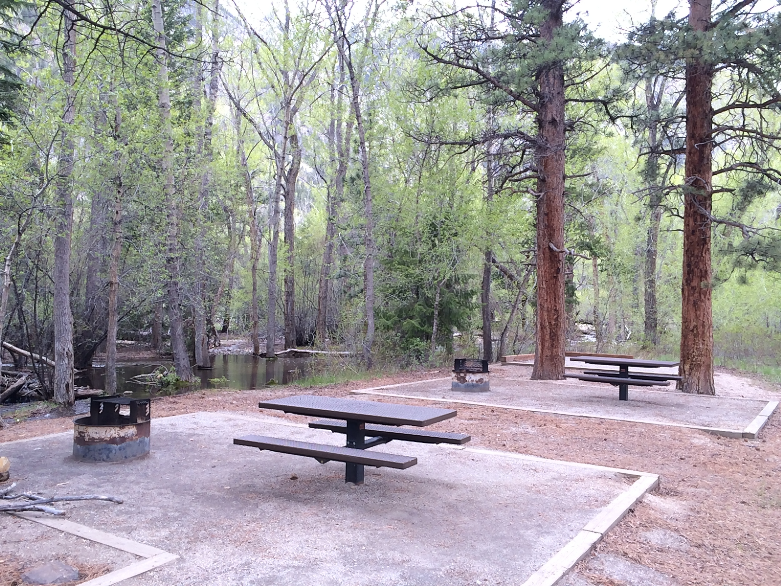 Chalk Lake campground Sites 7 & 6. Slow flowing portion of chalk creek is next to camp