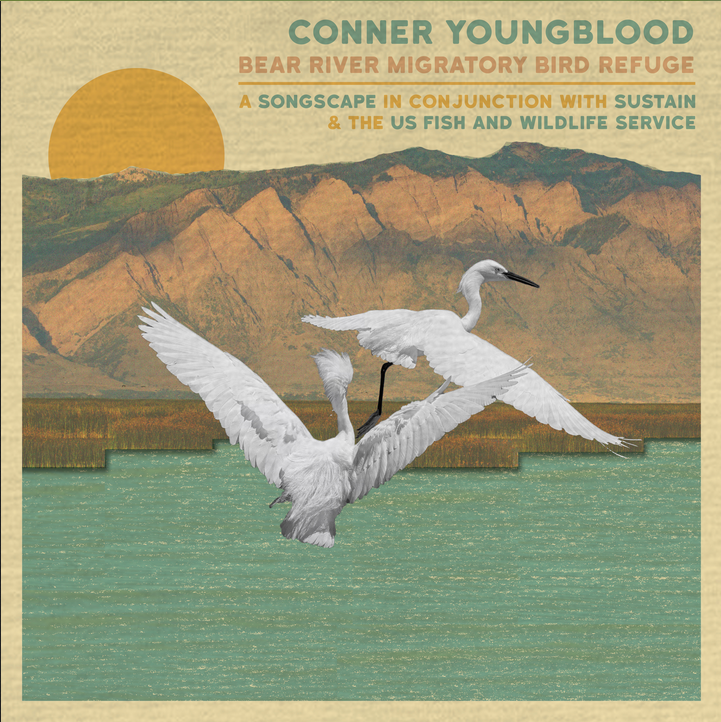 Conner Youngblood (Indie Rock) at Bear River Migratory Bird Refuge (UT)