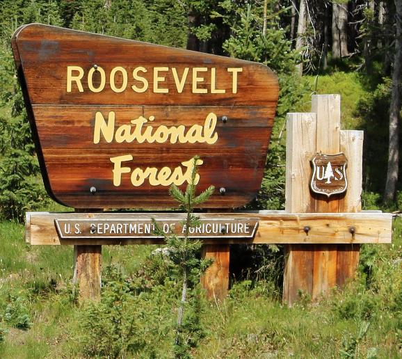 Screenshot-2018-6-6 Roosevelt_National_Forest_sign JPG (JPEG Image, 2175 × 1658 pixels) - Scaled (39%).png