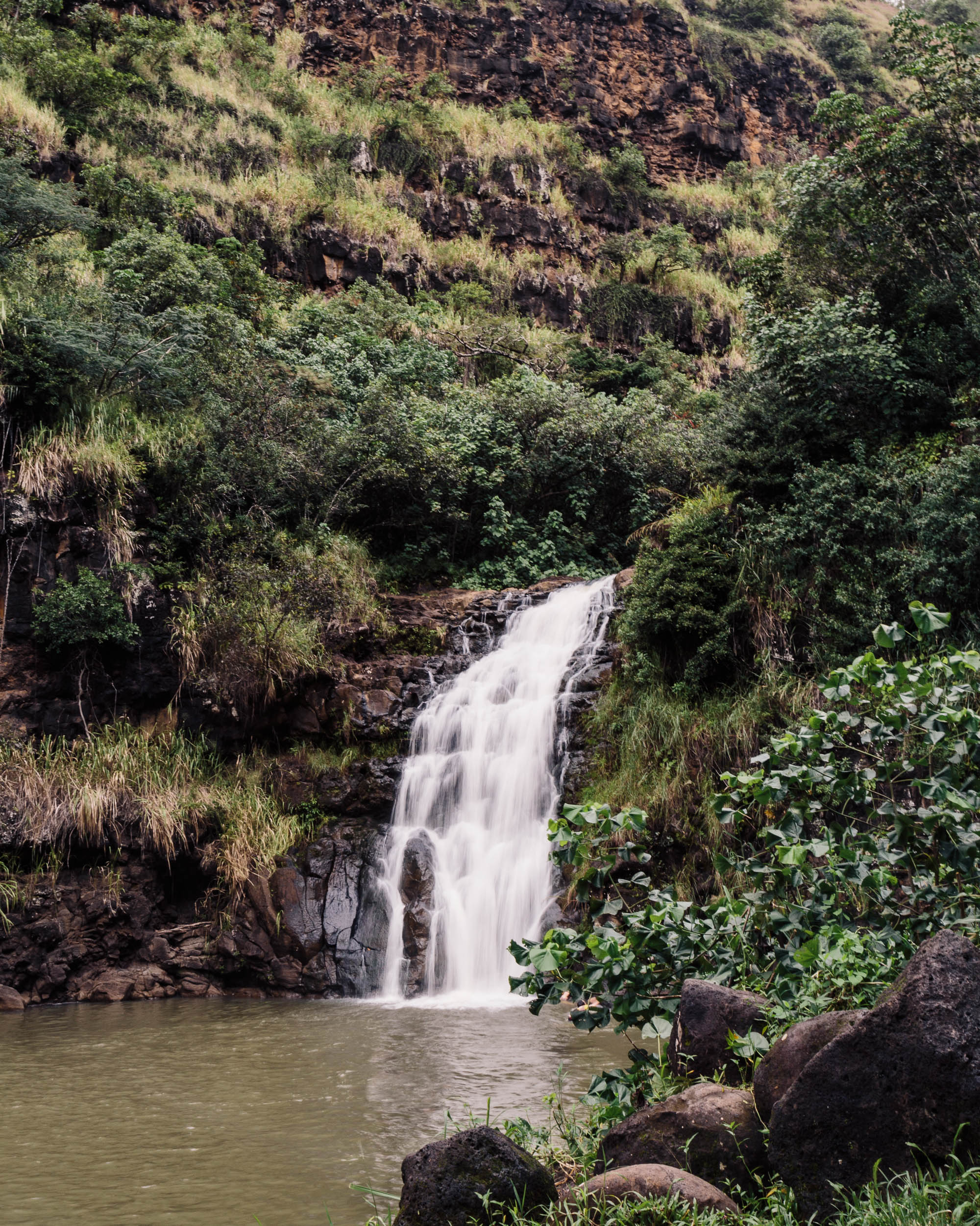 Waimea Valley Waterfall | North Shore Oahu