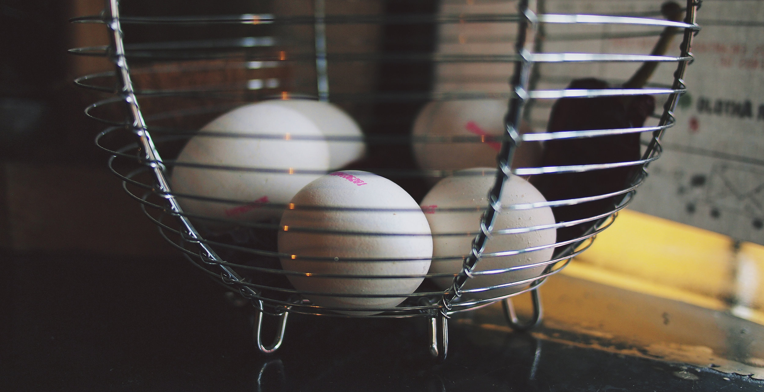boss-fight-stock-images-photos-free-photography-eggs-basket.jpg