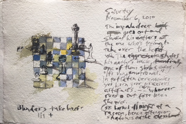 Veronika: Chess Days, 2017