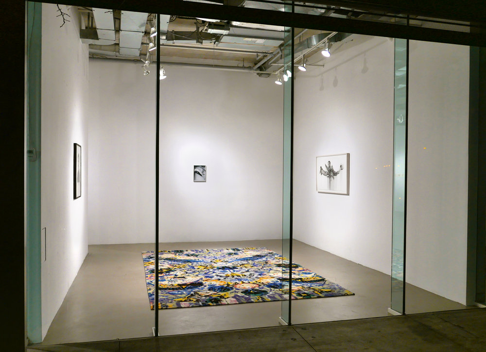 Installation View,  Out Through the Inside,  2017