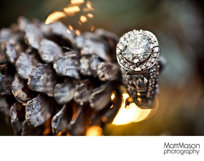 Engagement Ring Photo on Christmas Tree