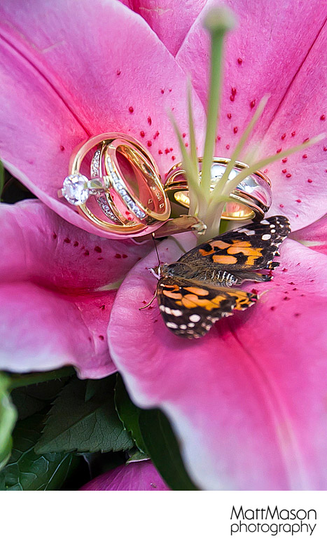 Engagement Ring in Flower with Butterfly