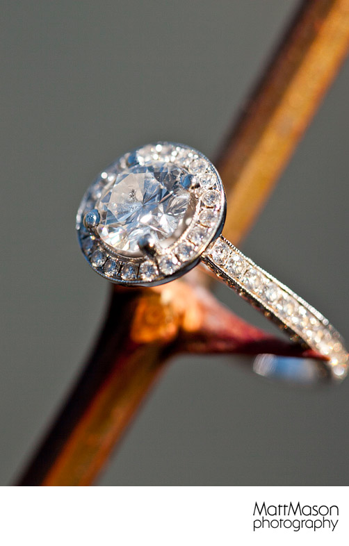 Ring on a thorn