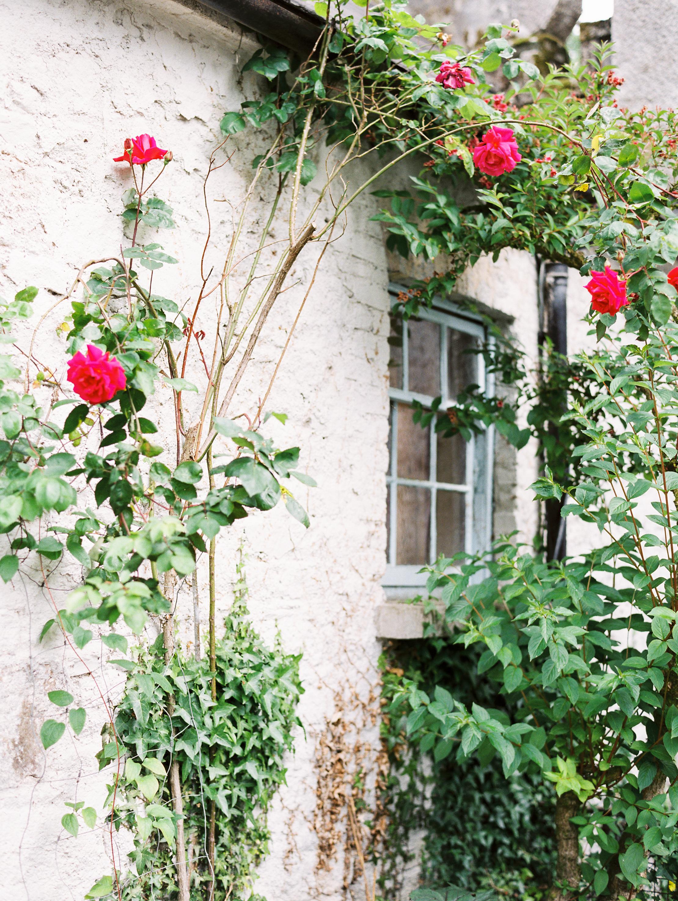 As_Ever_Photography_Secret_Garden-71.jpg