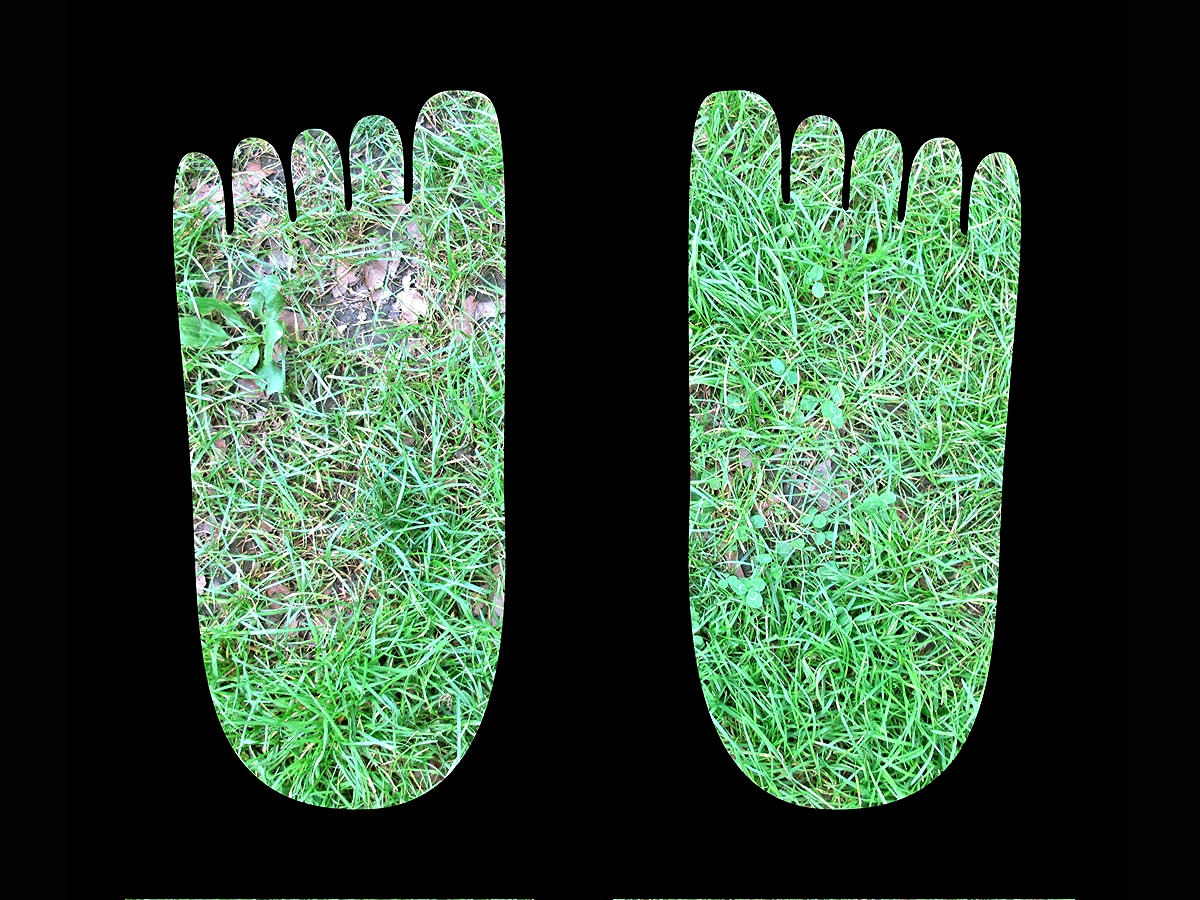 The video footprints of the Invisible Giant