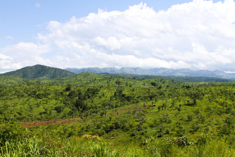 Tanzania-3.jpg