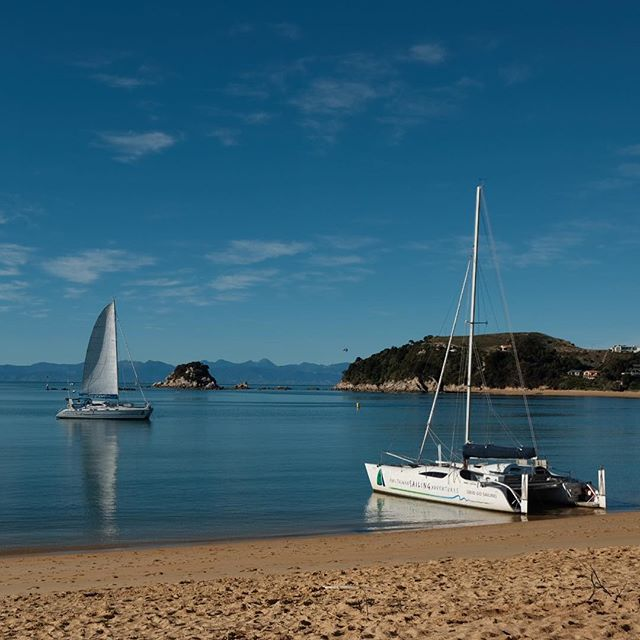 The secret: do Abel Tasman in the fall. Still beautiful, and less crowded 🙌🏼
