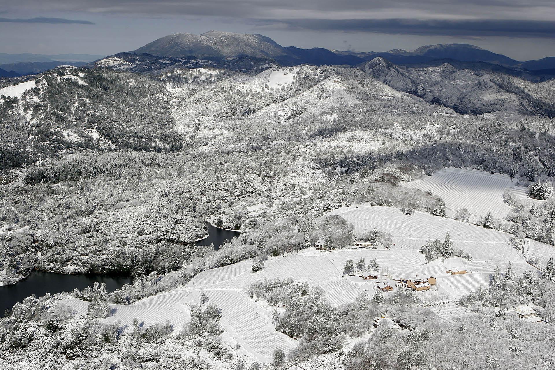 rattlesnake snow (3).jpg