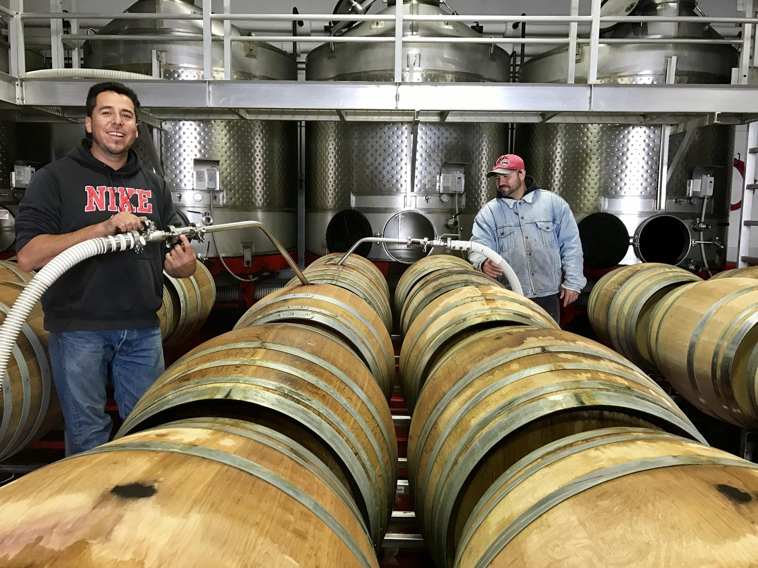 Pesenti winery at work.jpg