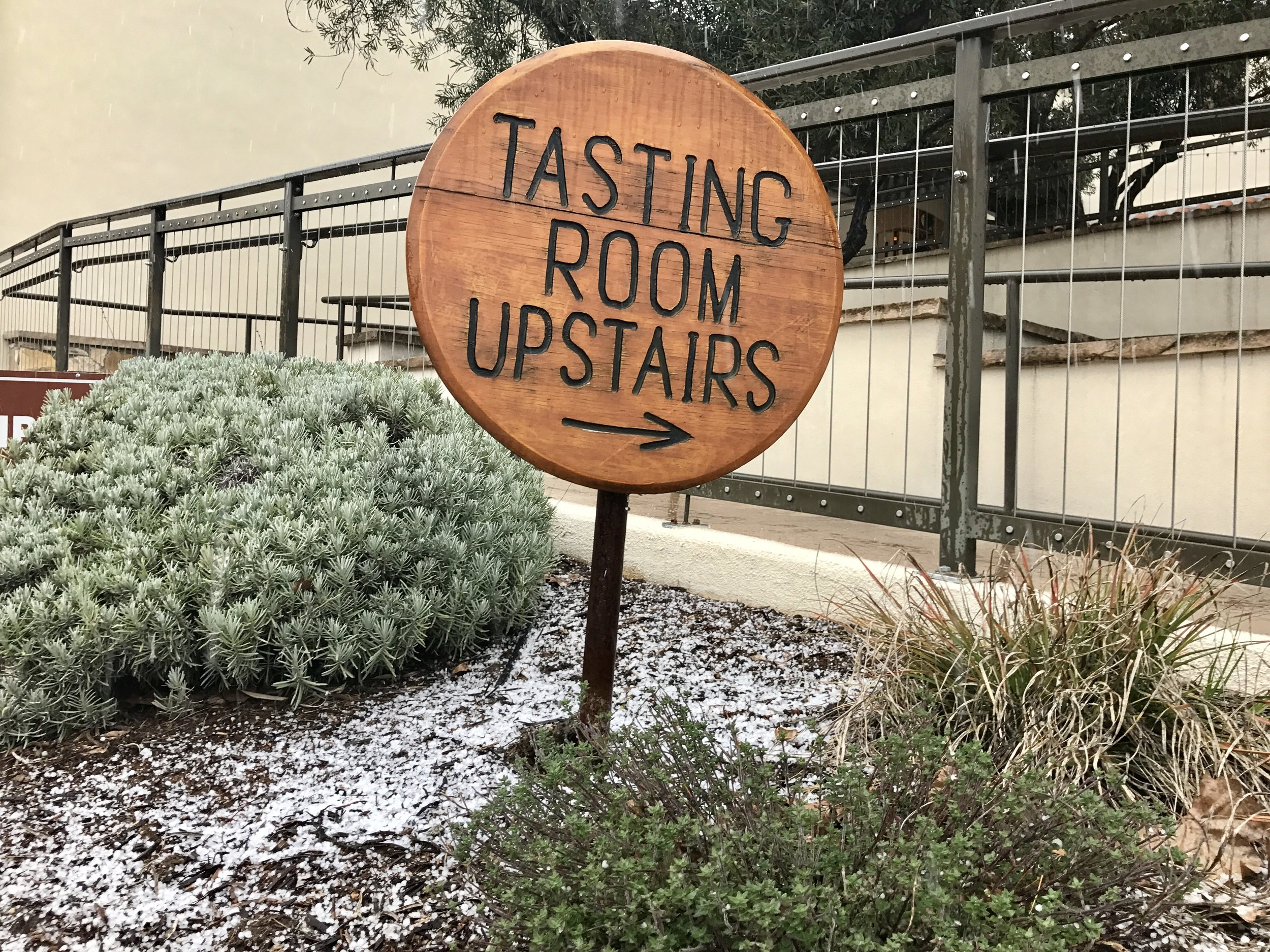 Snow! Well, it was hail. Paso Robles is known for its extreme temperature swings.