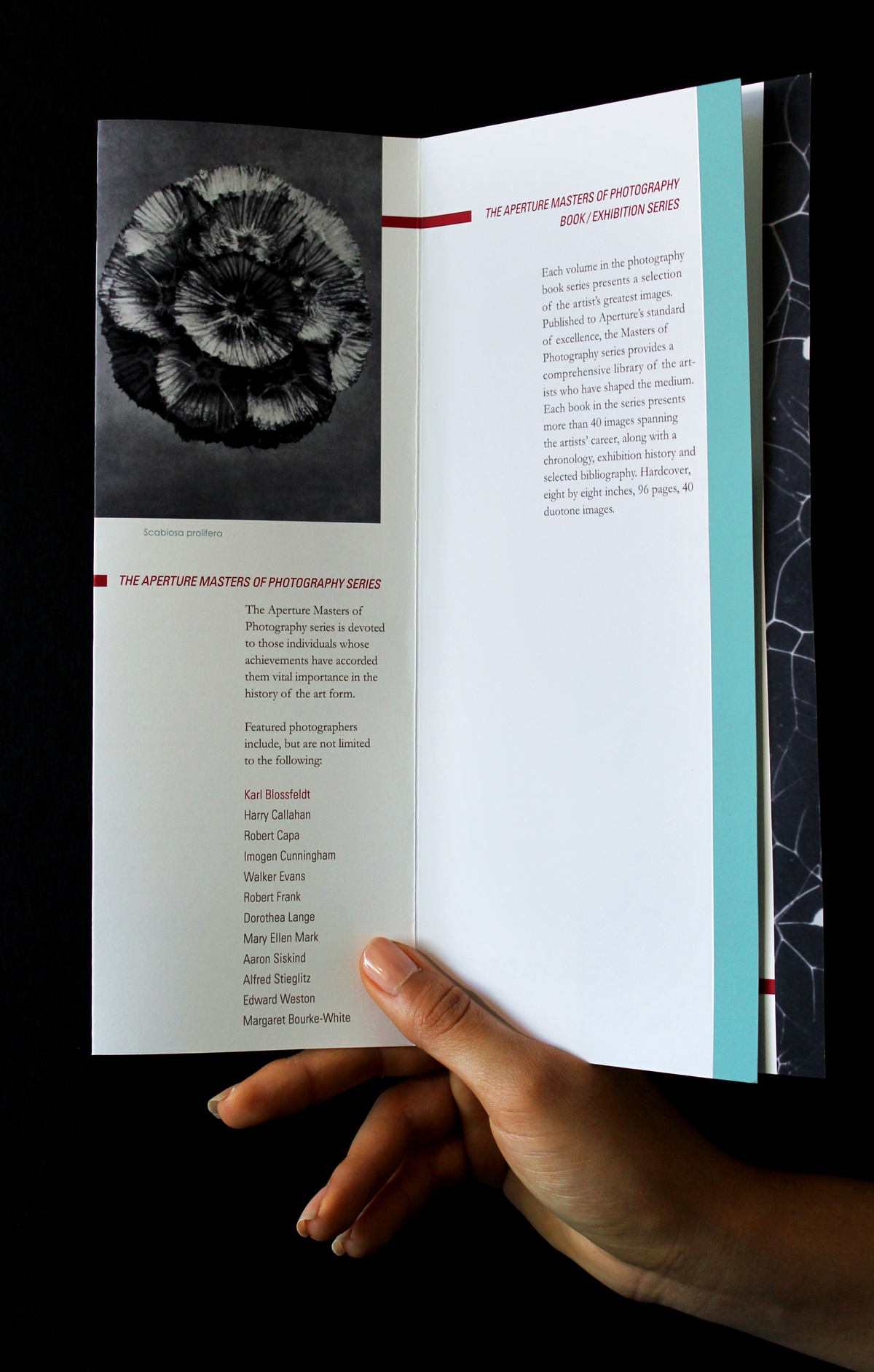 KB_brochure_open-1.jpg