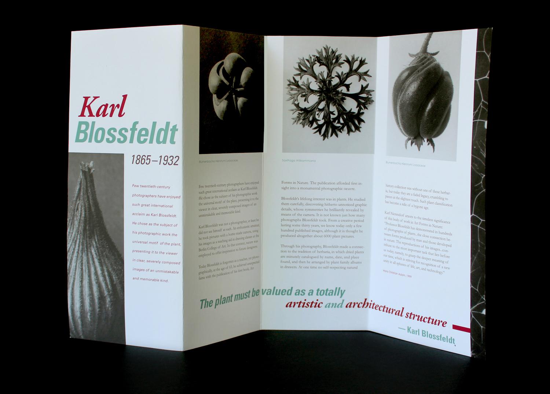 KB_brochure_open_all(1).jpg