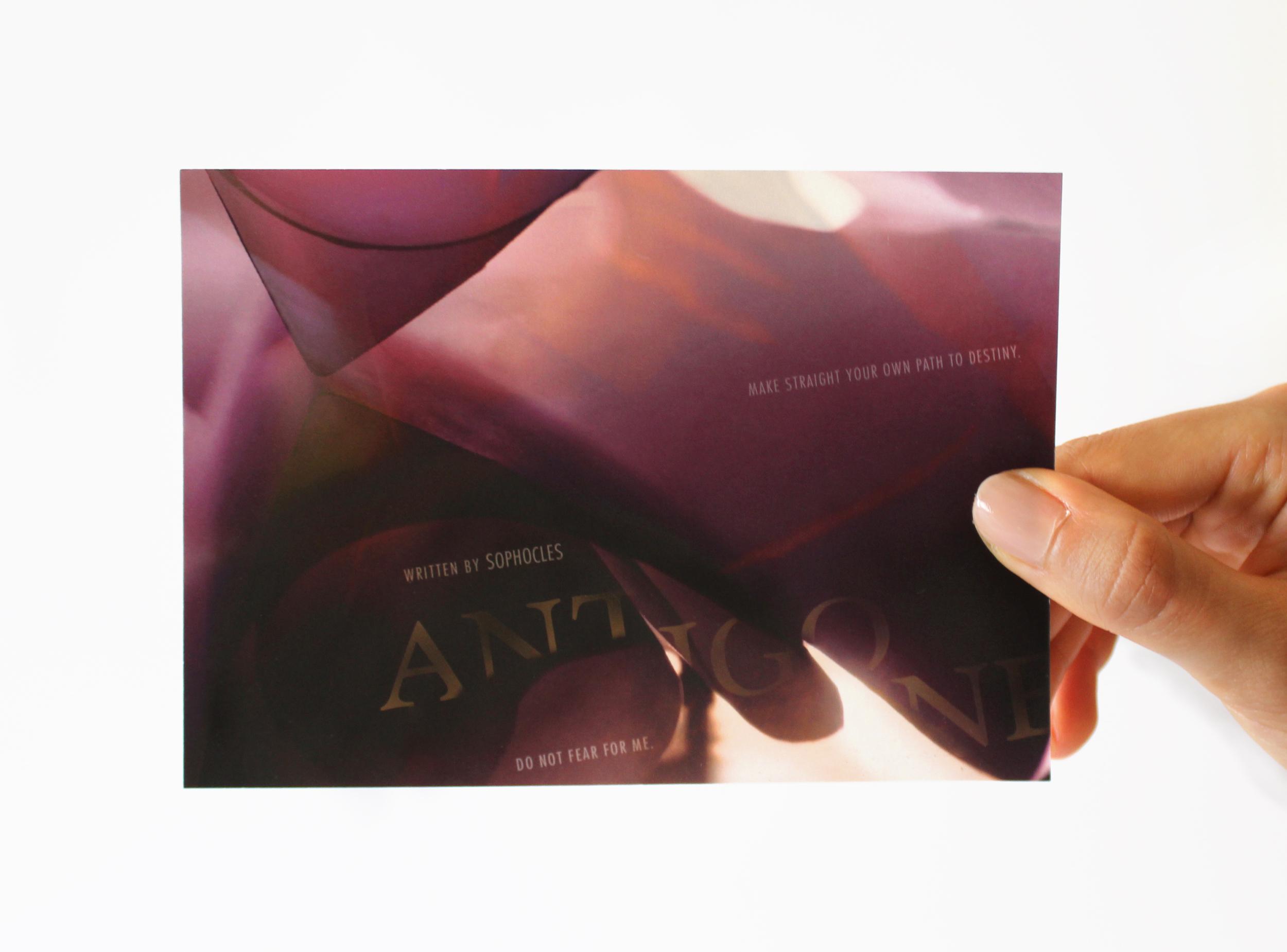 AntigonePurple.jpg