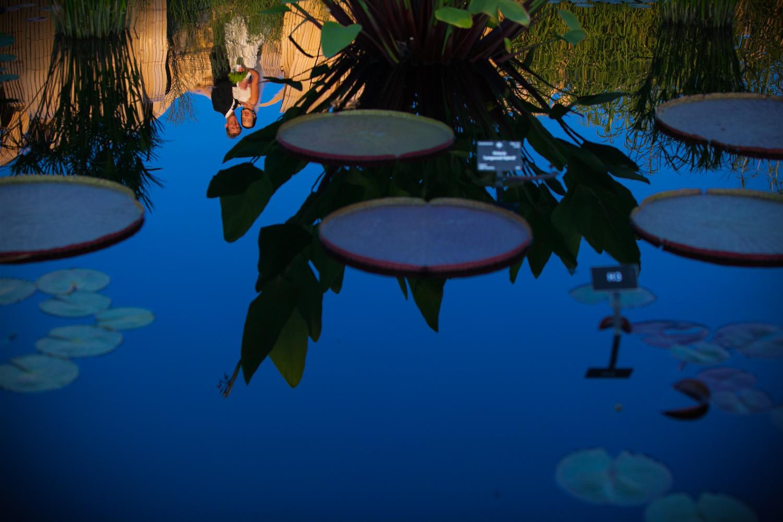 Denver_Botanic_Gardens_053.JPG
