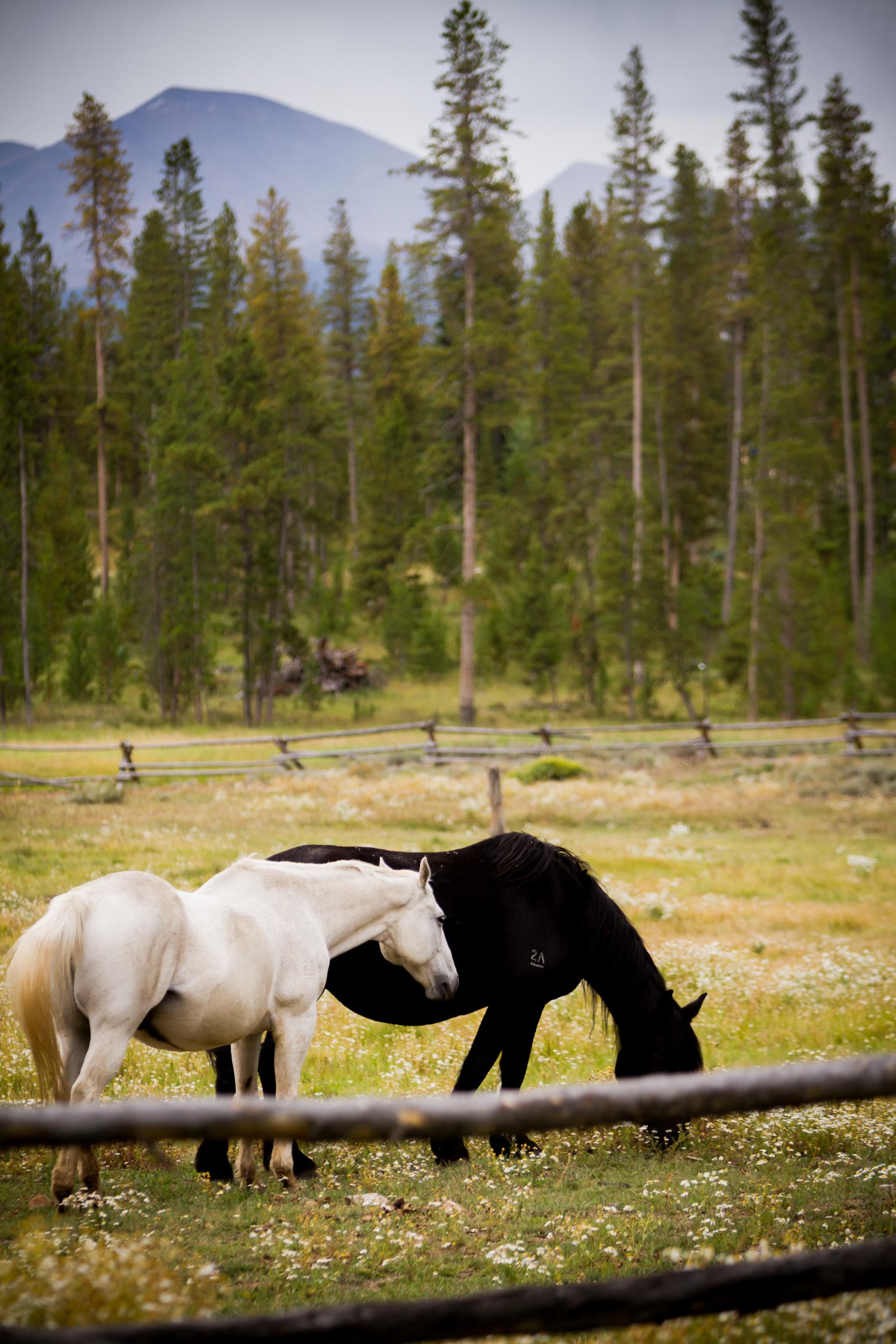 Devils_Thumb_Ranch_058.JPG