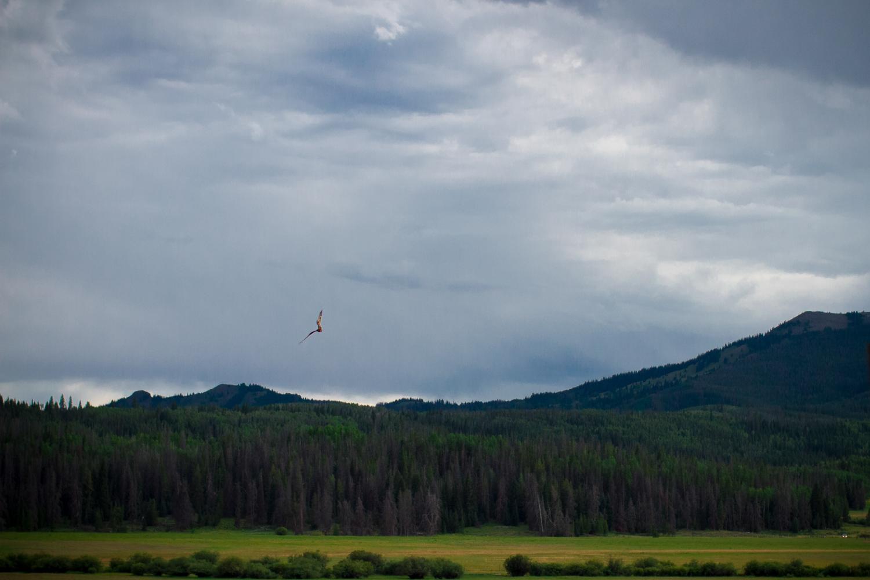 Fetcher_Ranch_Steamboat_062.JPG