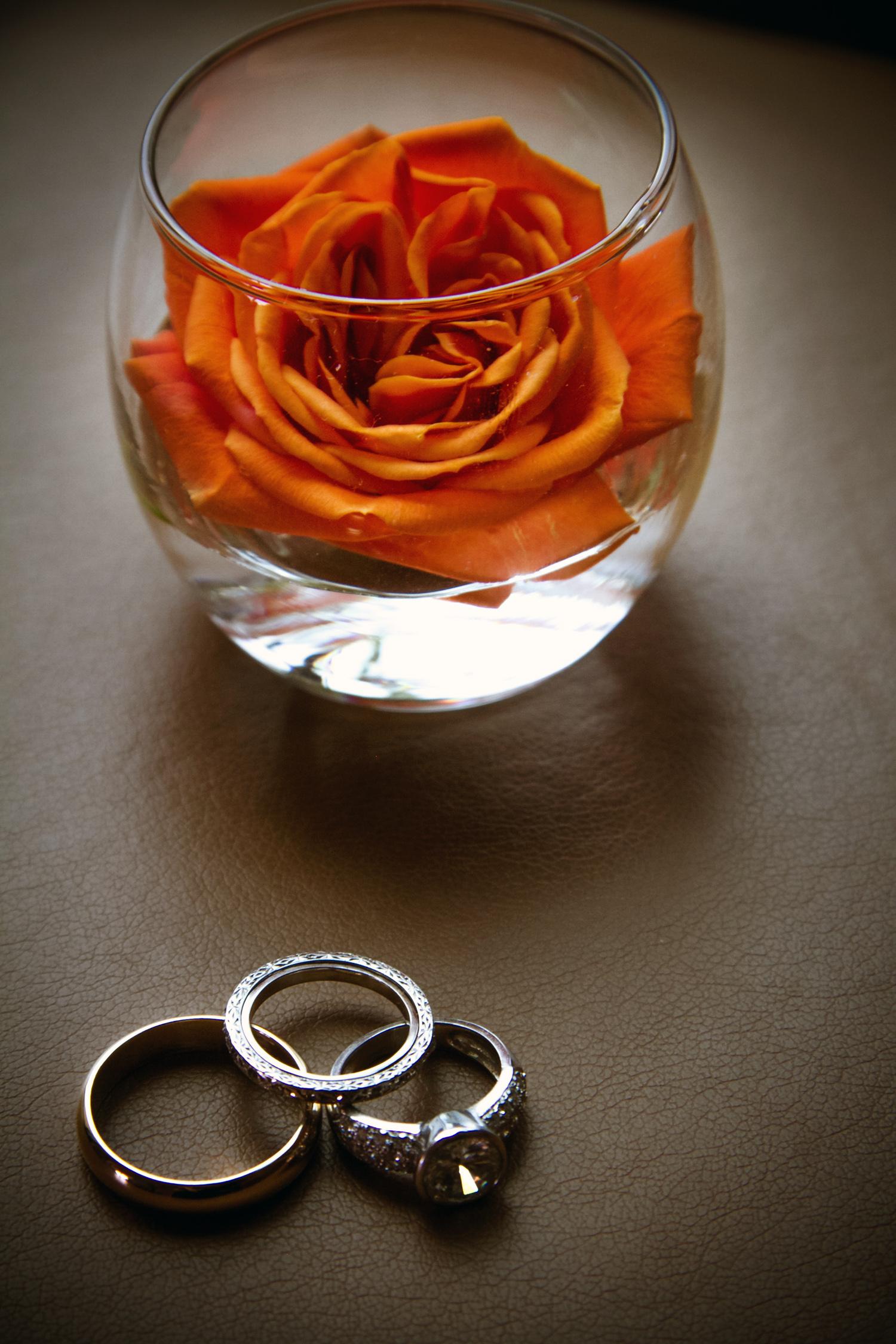 Planet_Bluegrass_Lyons_Wedding_004.JPG