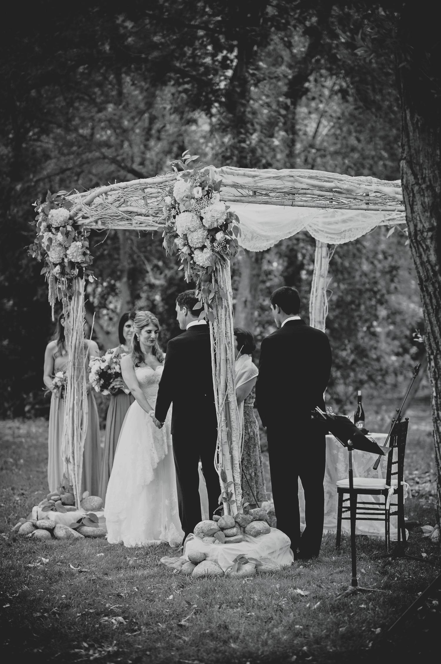 Planet_Bluegrass_Lyons_Wedding_053.JPG