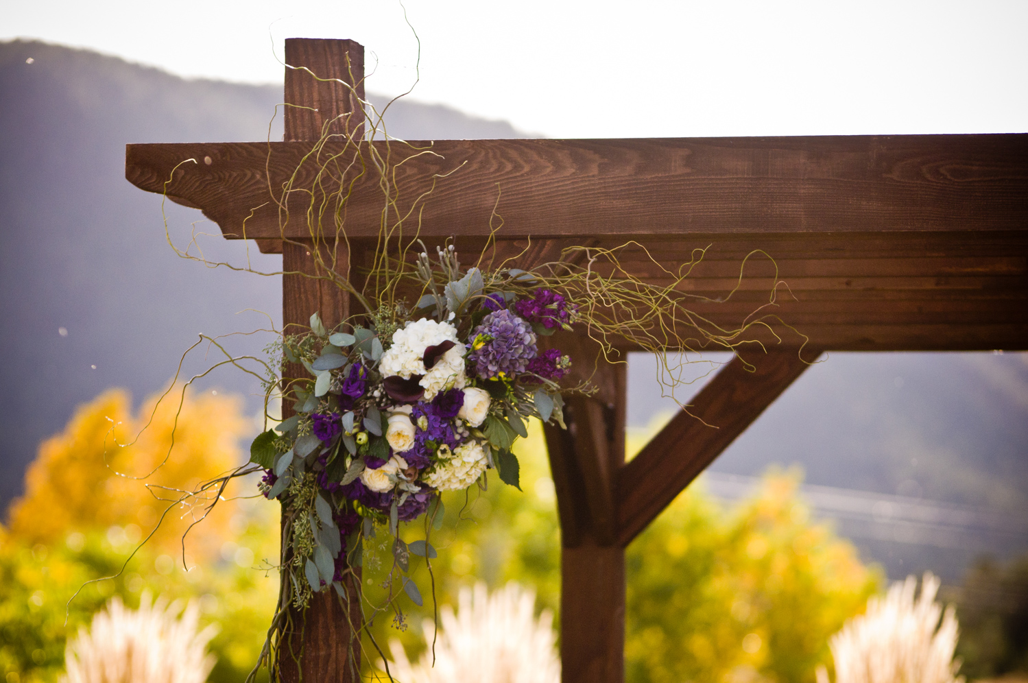 Crooked_Willow_Farms__Sedalia_Wedding_018.JPG