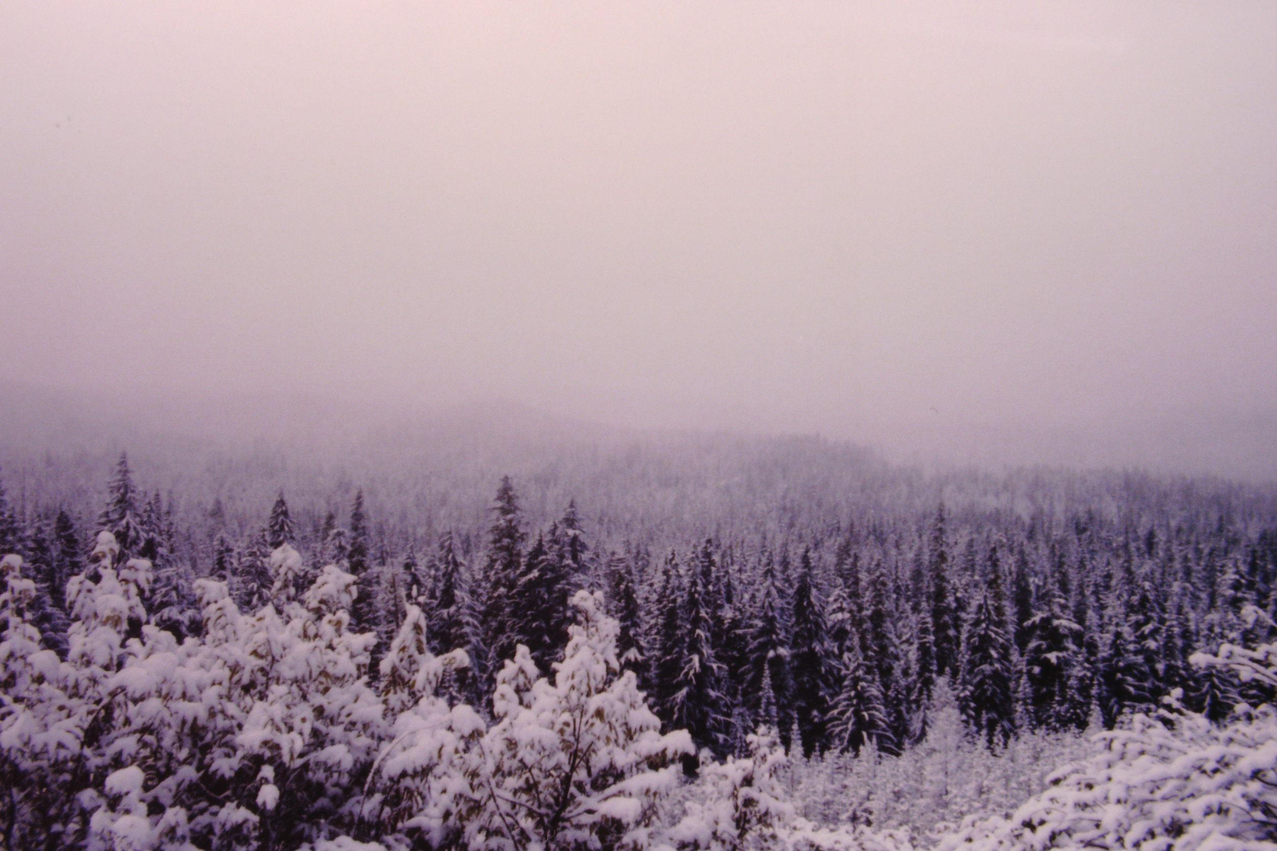 KodakEktachromeSlide(Portland--SanDiego)86.JPG